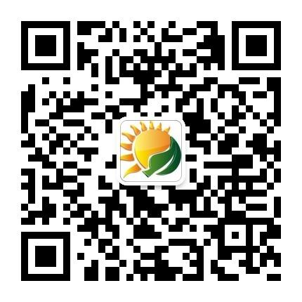 深圳新新阳光教育