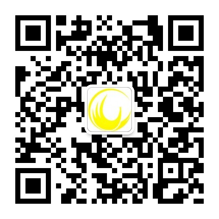 广州市凤凰艺术培训中心