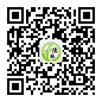 深圳德林教育培训