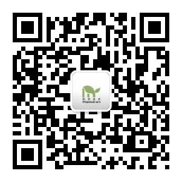 上海新苗美术