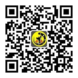 宏兴国学跆拳道朝