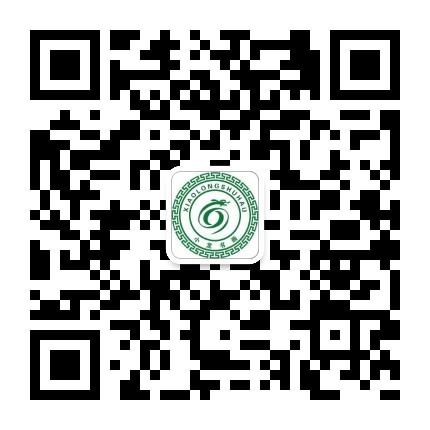 深圳小龙书法
