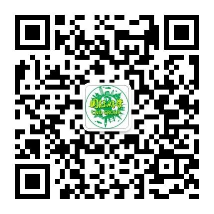 CNDGROUP国际游学
